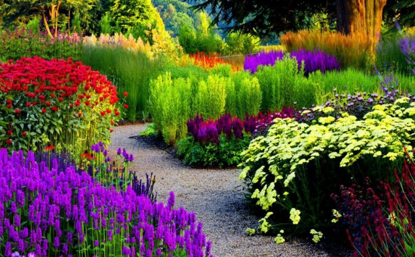 Beautiful Gardens A Guide to Gardens Flowers Plants and